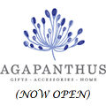 agapanthus-now-open-120