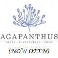 agapanthus-now-open